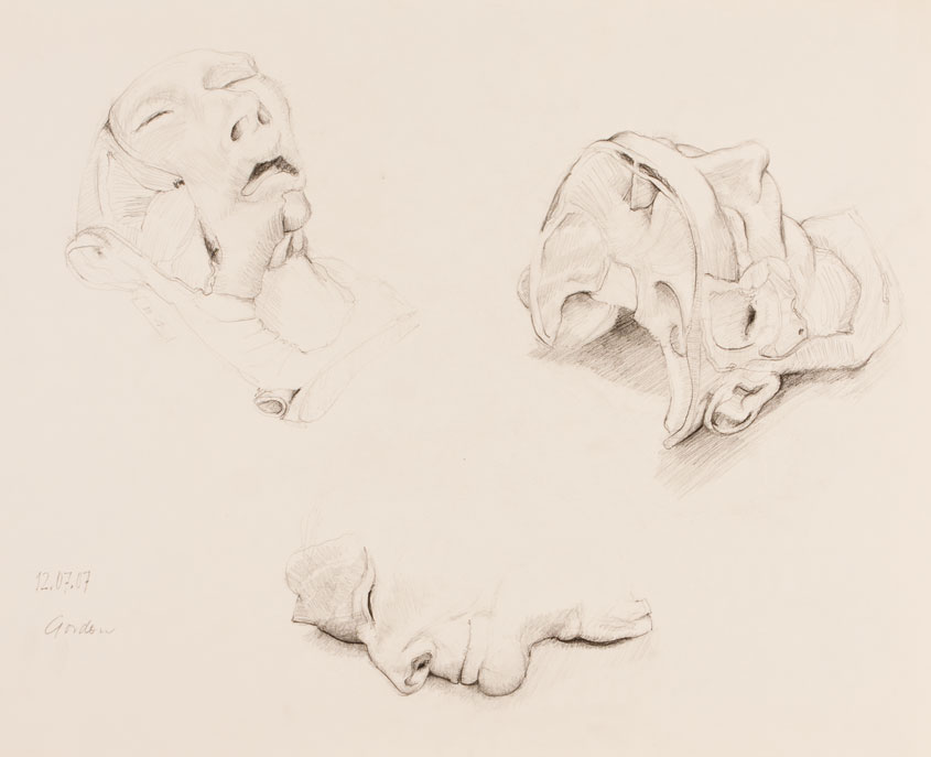 Pencil drawing of two dissected human heads